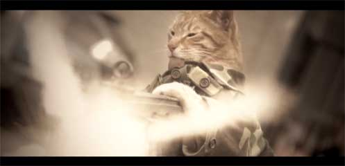 Medal of Honor Cat by Freddiew (Freddie Wong)