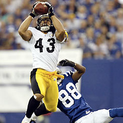 troy polamalu Pittsburgh Steelers Safety