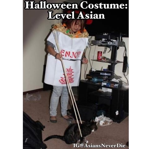asiansneverdie Fortune Cookie Costume  sc 1 st  Jackfroot & Asian Inspired Halloween Costume Ideas for 2017