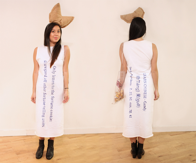 Fortune Cookie Costume